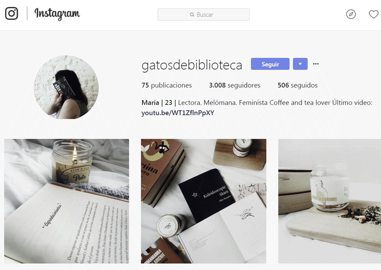 Bookstagram - Gatos de biblioteca