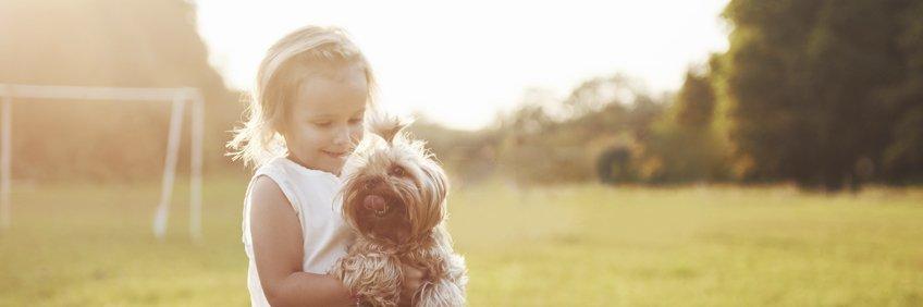 Beneficios de una mascota