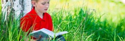 Niño con camiseta roja leyendo al aire libre en un campo verde